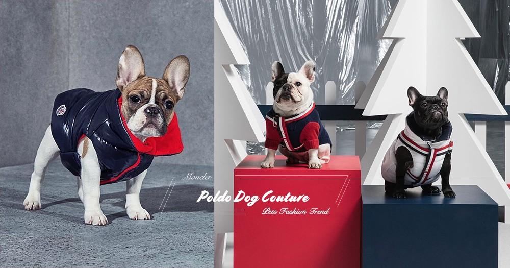 小狗也要轉季:看Moncler就知道今年流行紅、白、藍三色!