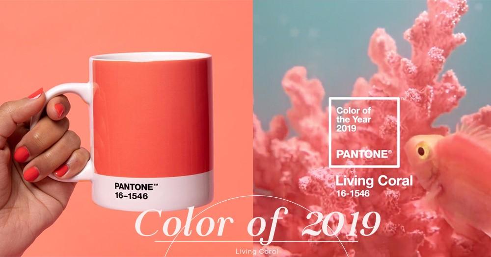 召喚顏色控!Pantone公佈2019年顏色為Living Coral活珊瑚橘色,準備好迎接鮮豔色彩的一年了麼?