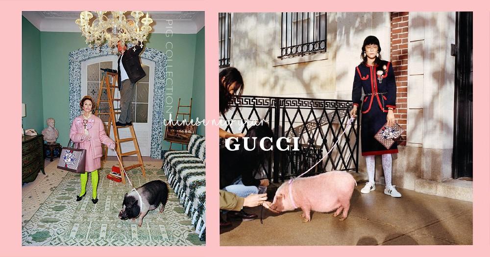 豬豬家族又添一員!GUCCI也推出小豬系列單品!