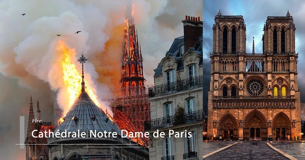 法國人哭了:GUCCI母公司CEO決定捐贈巨款,重建巴黎聖母院!