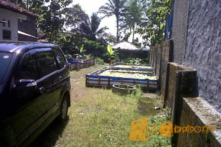 harga rumah+tanah strategis di purwokerto Jualo.com