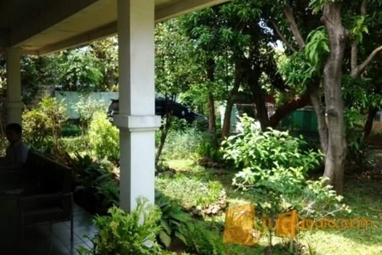 harga Tanah bonus rumah di cibinong bogor Jualo.com