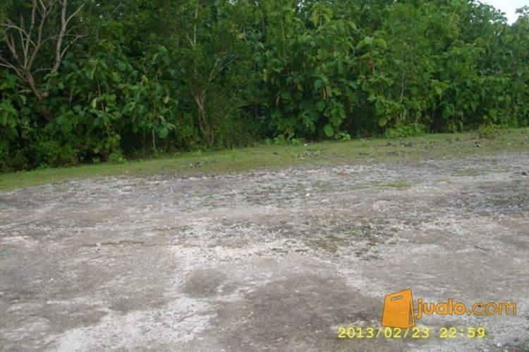 harga Tanah cocok di kavling di Unud Jimbaran Jualo.com
