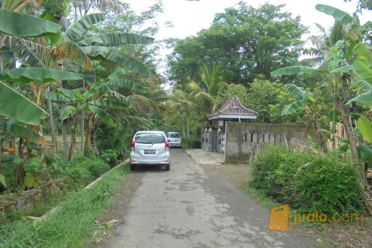 harga Rumah Asri Nyaman \u0026 Minimalis di Minggir, Sleman, Yogyakarta Jualo.com
