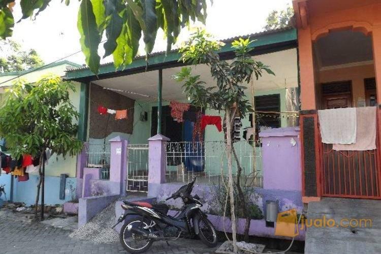 harga JUAL MURAH Rumah siap huni di CILEGON Jualo.com