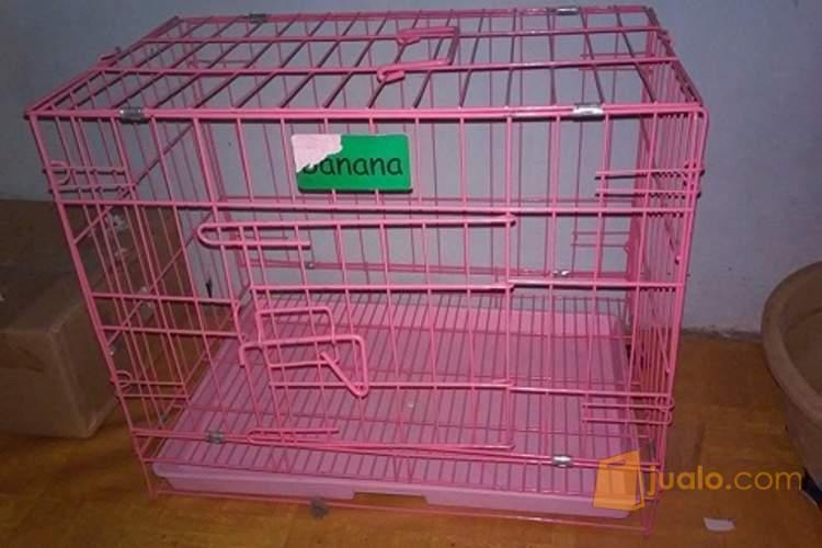 harga kandang + tali leher + tempat buang air kucing (Bandung) Jualo.com