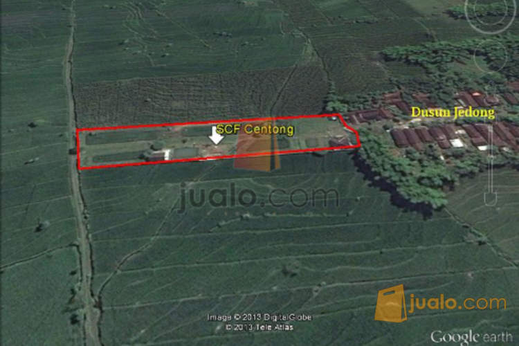 harga Tanah dan Rumah dijual murah, d. Centong, daerah Pacet, kec. Gondang, Mojosari Jualo.com