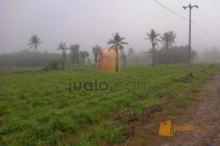 harga Tanah Kapling Murah di Ngabul Jepara Jualo.com