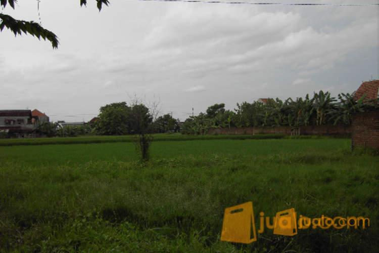 harga Tanah Kering 2400 M2 Dgn Izin Perumahan Sumber Solo Jualo.com