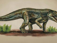 Vivaron haydeni xuất hiện cách đây 212 triệu năm, có họ với loài cá sấu ngày nay. Ảnh: Matt Celeskey.