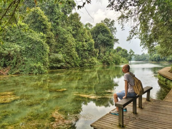 Deputy Editor Justin Cheong plans to savour a quiet moment at MacRitchie Reservoir this Singapore National Day long weekend.
