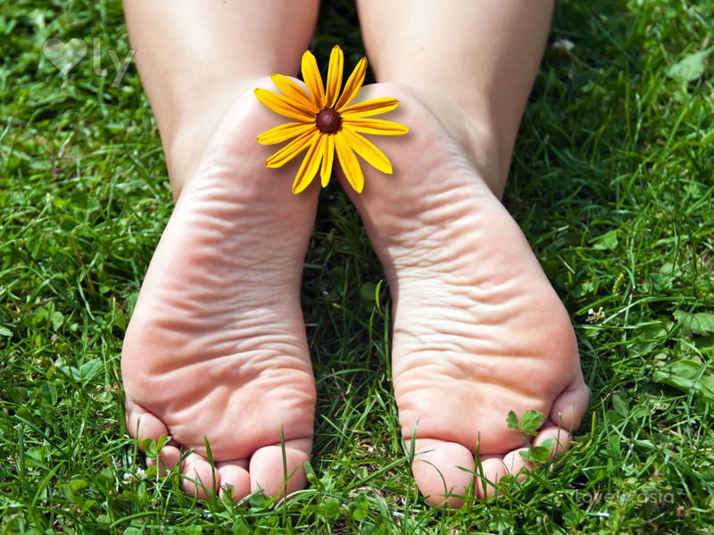 "beautiful feet photo logo в""– 15553"