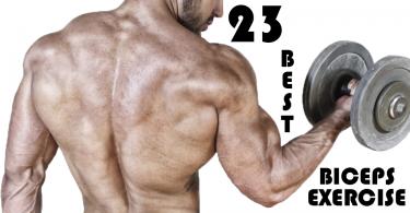 【健身圖鑑】23個二頭肌訓練全收錄