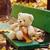 lonely_teddy