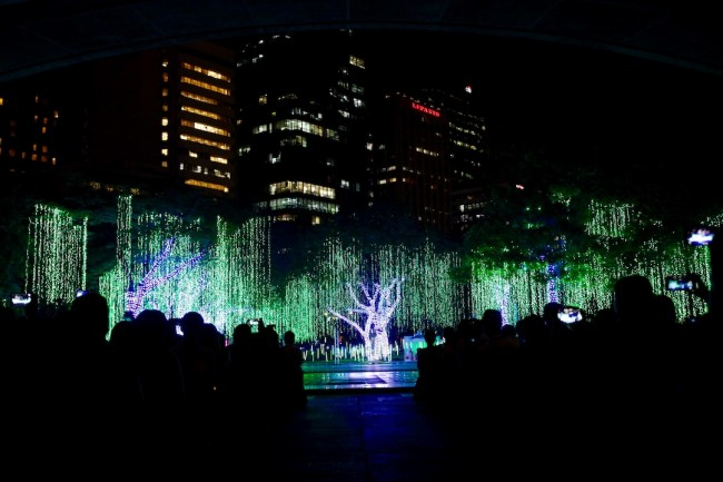 Spectators watch Ayala Triangle Gardern's much awaited yearly lights and sounds Christmas show, November 15, 2016. Photo by Bernard Testa, InterAksyon.