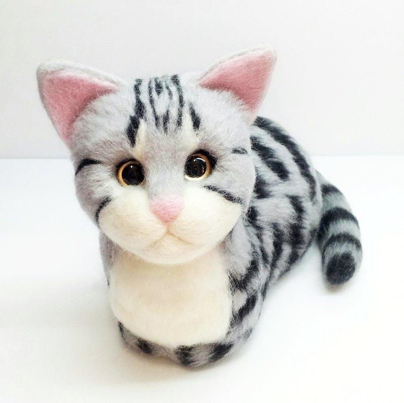 壁纸 动物 猫 猫咪 小猫 桌面 800_798
