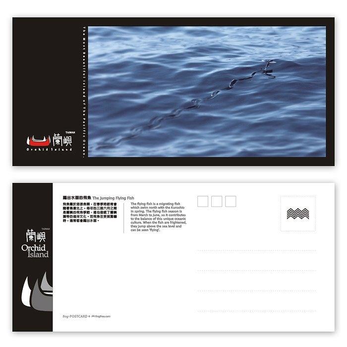兰屿明信片 - 海洋系列(横) - 跃出水面的飞鱼