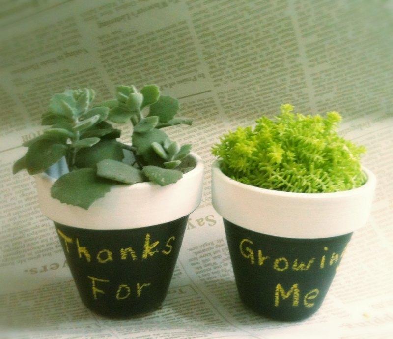 植物标签小制作