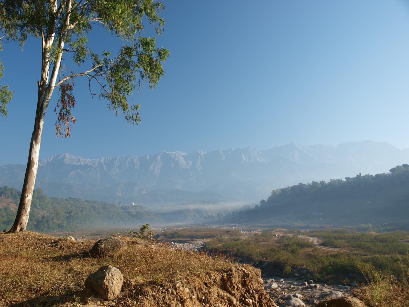 View_of_a_Himalayan_valley,_Himchal_Pradesh.jpg