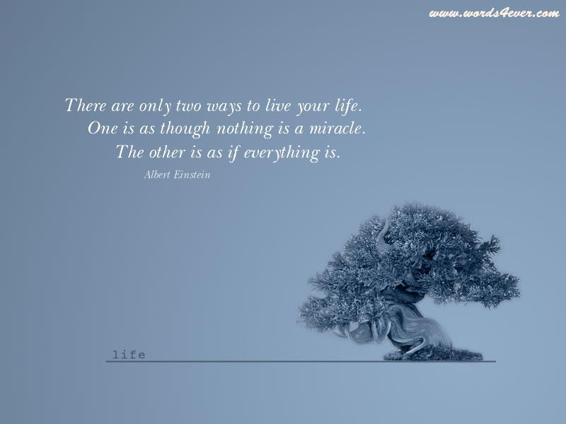 quote wallpaper @ www.spicyflavours.net (51).jpg