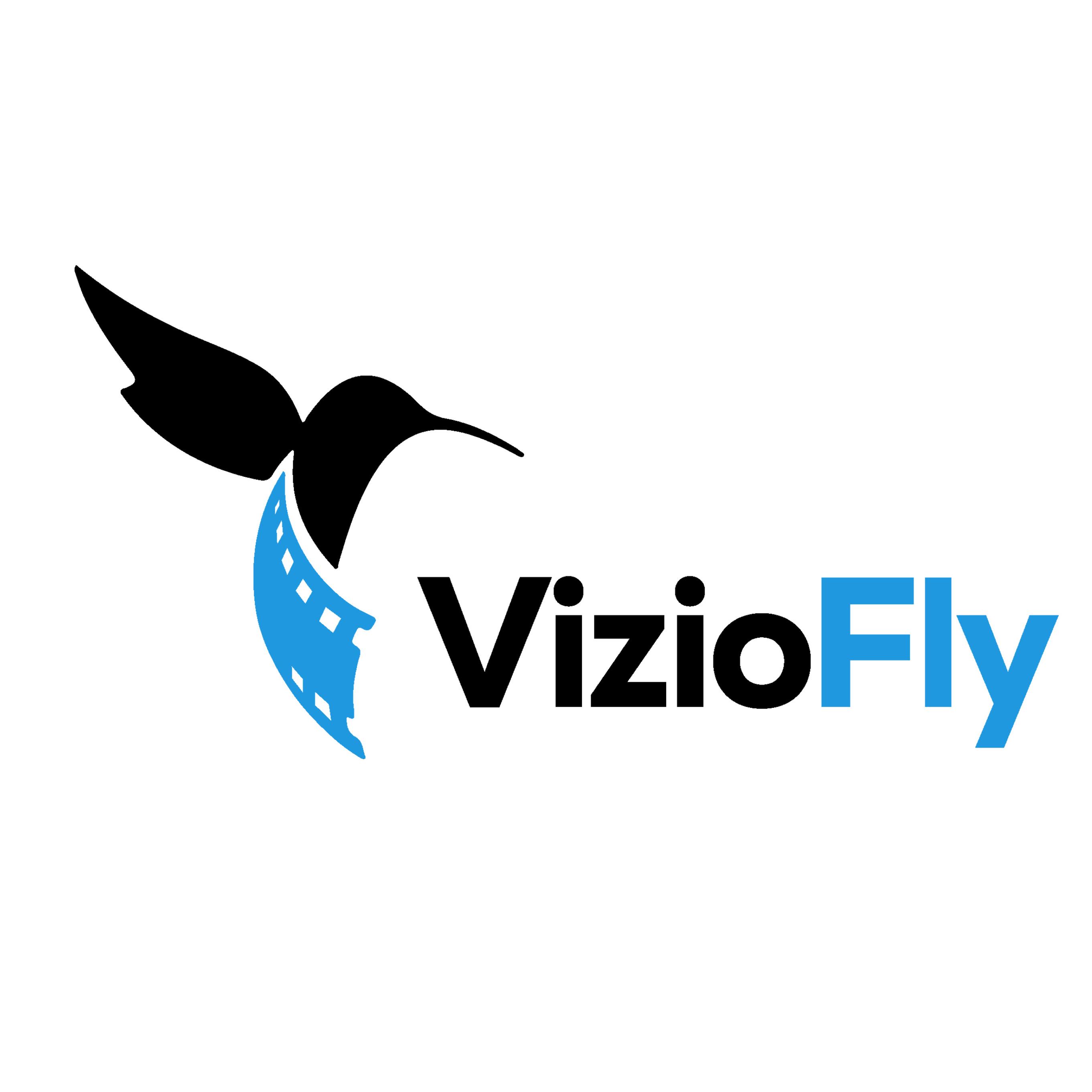 VizioFly