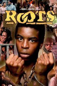 Roots (ทาส)