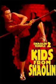 เสี้ยวลิ้มยี่ ภาค 2 (Shaolin Temple 2: Kids from Shaolin)
