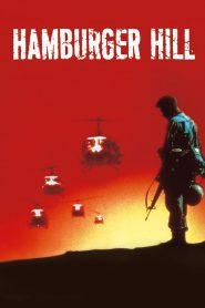 สูงเสียดฟ้า ข้าก็จะยึด (Hamburger Hill)