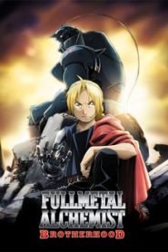 Fullmetal Alchemist: Brotherhood (แขนกลคนแปรธาตุ)