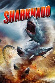 ฝูงฉลามทอร์นาโด (Sharknado)