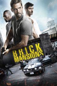 พันธุ์โดด พันธุ์เดือด (Brick Mansions)