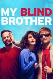 มาย ไบลนด์ บราเธอร์ (My Blind Brother)