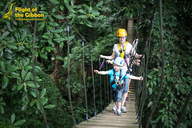 Flight of the Gibbon Chiang mai Socialgiver 2