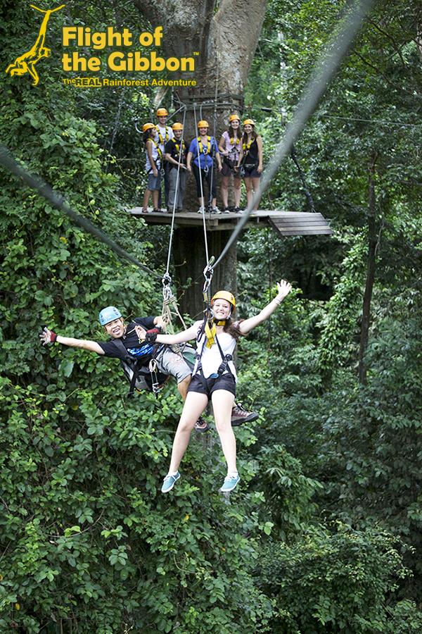 Flight of the Gibbon Chiang mai Socialgiver