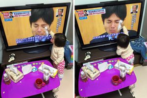7-Baby Attempts To Dry Tears Of A Japanese Politician