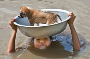 13-Young Filipino Girl Tries To Keep Her Puppy Safe During A Flood