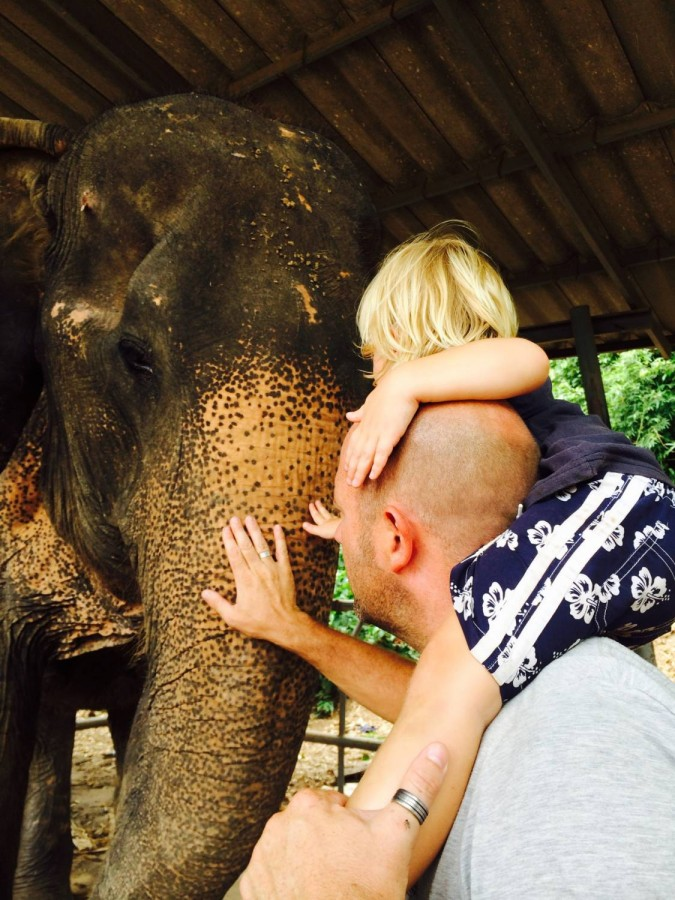 ช ช้าง ชรา