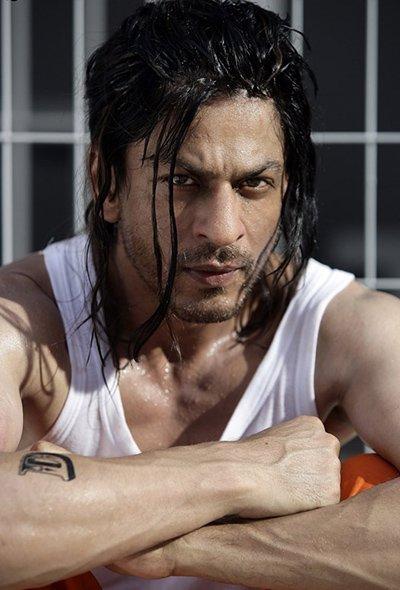 SRK 6.jpg