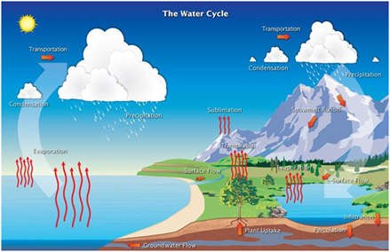 What Is Water Cycle? | Water Cycle Process & Stages