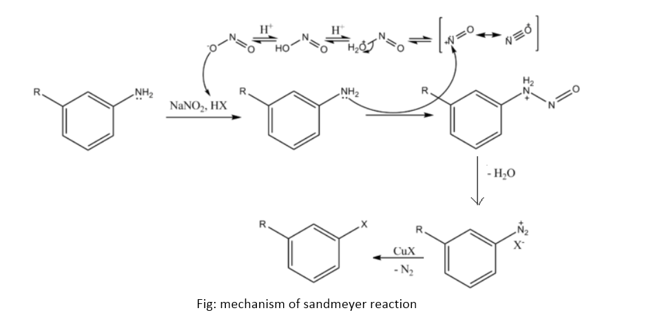 sandmeyer reaction lab report