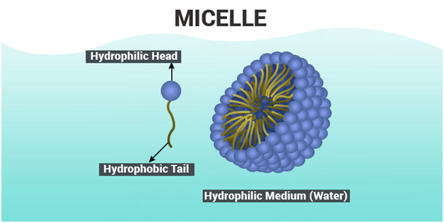 mechanism of micelle formation pdf