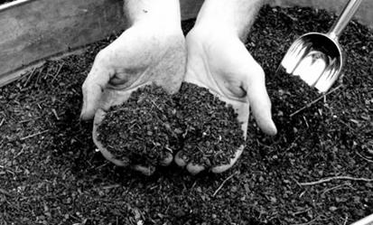 Vermiculture