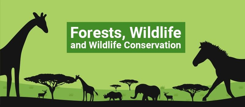 essay on conservation of wildlife in india