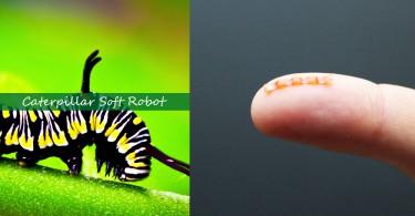 【軟體機械人】科學家打造毛毛蟲機械人,能夠推動比身體重量高出10倍的物體