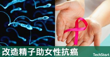 【抗癌福音】有效助女性抗癌,精子可改造成藥物運輸載體