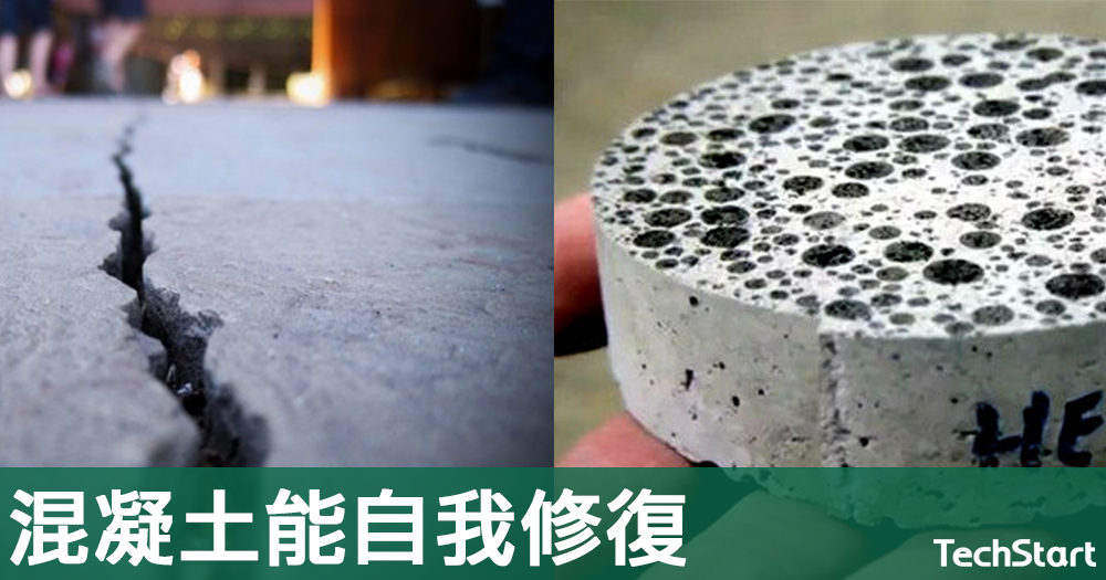 【加細菌】混凝土結合自然生物機制,能自我修復延長使用壽命