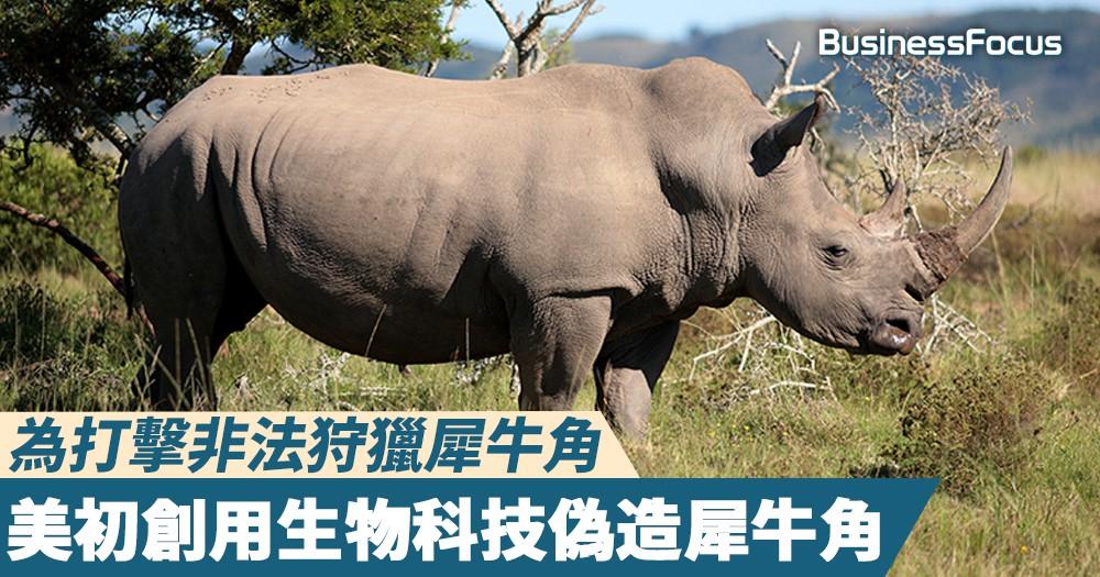 【以假亂市】為打擊非法狩獵犀牛角,美初創想出了用生物科技偽造犀牛角