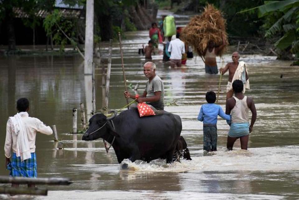 flood-in-araria_pti