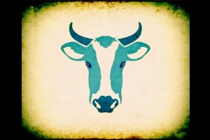 COW-Final