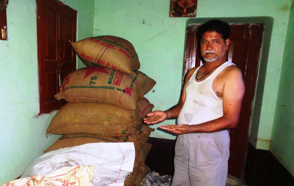 مکامہ ٹال واقع چنتامنی چک کے کسان بھویش کمار کا کہنا ہے کہ کاروباری دال خرید بھی لیتے ہیں تو فوراً پیسہ نہیں دیتے ہیں۔ (فوٹو : امیش کمار رائے /دی وائر)